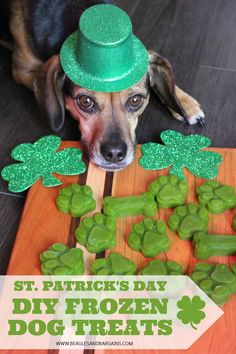 St. Patrick's Day Frozen Dog Treats - DIY Green Dog Treat Recipe Smoothies for dogs | St. Paddy's Day | St. Patty's Day