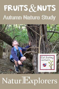 (This post contains affiliate links and links to my books.) Our weekly nature walks so far in September have been so exciting as we've been on the hunt for fruits and nuts. This is the perfec…