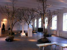 stromy v interiéru