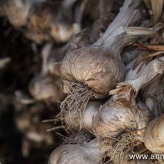 l'Ail de la Drôme. IGP - Anne-Hélène Stuffed Mushrooms, Vegetables, Garlic, Stuff Mushrooms, Vegetable Recipes, Veggies