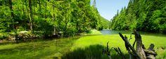 Národný park Slovenský raj Golf Courses, Park, Parks