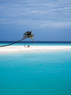 Constance Halaveli Maldives @}-,-;—
