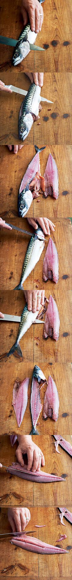 How to fillet round fish. Learn the perfect technique for removing round fish fillets, i.e. mackerel, off the bone with this step by step guide.