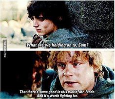 We all need a little Samwise sometimes, especially in times like these. - 9GAG
