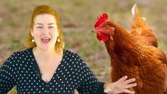 Your chickens need the right foods if you want them to lay eggs all year long. It takes a lot of extra nutrition to produce a new egg every day. Chicken Eating, Chicken Feed, Healthy Chicken, Chicken Coops, Keeping Chickens, Raising Chickens, New Egg, Goat Farming, Hobby Farms