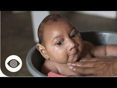 The Zika Virus Conspiracy - YouTube
