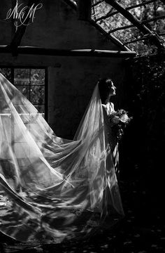Dimity's dramatic winter white cathedral veil is sure to turn heads on your wedding day.