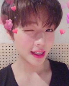 "362.2rb Suka, 18rb Komentar - Wanna One 워너원 (@wannaone.official) di Instagram: ""[#박지훈] Happy Valentine's Day to Wannable! 지훈이처럼 스윗달콤한 발렌타인데이 되세요♥ #해피발렌타인데이"""
