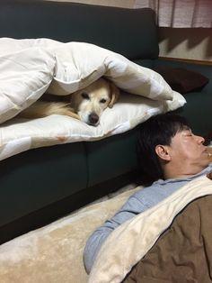 パパが寝てる間に隠れちゃおっと。