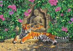 Spiritual Hideaway - Tigers Variant 2 Photograph  - Spiritual Hideaway - Tigers Variant 2 Fine Art Print - - by Chris Heitt