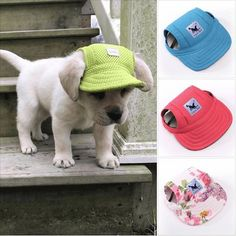 Get A Trendy and Sporty Dog Hat, direct to your door! This hat surely makes a fashion statement and make your already attractive PUP the center of attraction! NEW Custom Designs! - Large ear hole making it comfortable! Visor design, adorable and protects Animals And Pets, Baby Animals, Cute Animals, Pet Clothes, Dog Clothing, Chihuahua Clothes, Small Dog Clothes, Dog Supplies, Dog Care