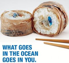 Most plastic pollution at sea starts out on land as litter on beaches, streets and sidewalks. After plastics enter the marine environment they slowly photodegrade into smaller pieces that marine life can mistake for food, sometimes with fatal results.   plastics impact.