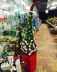 #grincs #grincsfa #otthon #lakberendezés #dekoráció #kert #kertészet #oaziskerteszet #instahunig #mik #virág #növény #igershungary #fotoklub #iponthu #iphonehungary #magyarig #szifoncom #mik_viragok #insta_viragok #karácsony #karacsony #karácsonyfa #karacsonyfa #karacsonyfadisz #karácsonyfadísz #unnepihangulat Easy Christmas Crafts, Simple Christmas, Christmas Decorations, Holiday Decor, Grinch Trees, Xmas, Christmas Tree, Holidays And Events, Advent