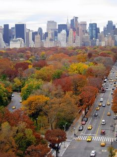 Central Park - Manhattan, New York / Vereinigte Staaten von Amerika / United States of America / USA  - Herbst / Autumn / Fall