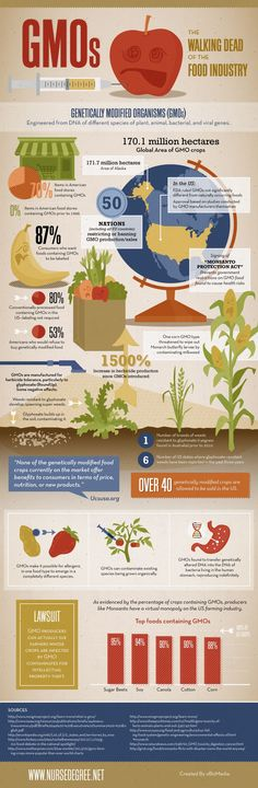 #INFOgraphic > American GMO Stories: It is estimated that 70% of the food  produced and traded in the US market contains GMOs and this shift has happened in just 16 years. Learn more about the ambiguous tolerance of the US legislation around GMOs in the farming industry and how GMO crops harm the eco-system.  > http://infographicsmania.com/american-gmo-stories/
