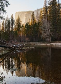 Yosemite National Park - California - USA (von puliarf)