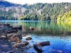 Cerne jezero, Sumava