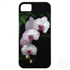 Cascading Orchid Beauties iPhone 5 Cases by birdersue from Zazzle - Digital photography by Sue Melvin