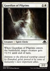 Guardian of Pilgrims