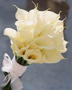 bridesmaid bouquets...love it