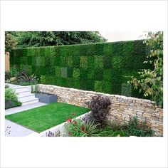 GAP Gardens   Vertical Wall Of Heathers Using The Vertigarden Modules    Image No: 0284149   Photo By J S Sira