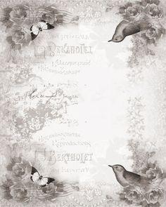 Gris oiseaux style vintage 1