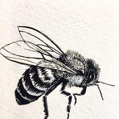 Honeybee sketch for cap