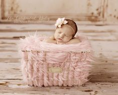 Newborn Baby Girl Photography Chicago Newborn Photographer