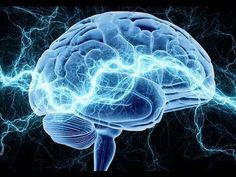 Cómo funciona el Cerebro - YouTube. Lo recomiendo para conocer las áreas del cerebro que trabajas cuando estudiamos.