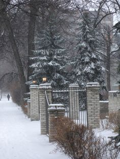 My winter wonderland. Historical Sites, Homeland, Continents, Winter Wonderland, Tourism, November, Walking, Scene, Canada