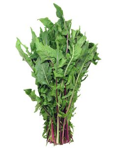 DANDELION GREENS: Had these today in my smoothie, cant even taste it! The USDA Bulletin list Dandelion Greens in the top 4 green veggies in overall nutritional value. The richest source of beta carotene in green veggies, third richest source of vitamin a out of all foods. Also rich in fiber, potassium, iron, calcium, magnesium, b vitamins, riboflavin, and a good source of protein. What an amazing food! Cost me $1.99 at giant, for a big bush of it, like shown in image.