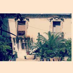 @aalbacreus Sicily, Italy