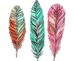 watercolor feathers.