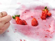 Berries : No one said berry picking was a clean activity. Lay the fabric over a large bowl. Pour boiling hot water (straight from a tea kettle works) through the fabric, taking care not to burn yourself. This should remove most of the stain, but some color might linger. Fight it by rinsing and dabbing the stain with white vinegar and soaking in cold water before laundering.  Photo:jeangill/Getty Images