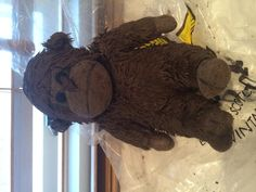 Found at Gilwern on 19 Dec. 2015 by Mererid: Found this litte monkey by canal car park in Gilwern Toy Monkey, All Is Lost, Teddy Bear Toys, Lost & Found, Car Park, Pet Toys, Wales, Dinosaur Stuffed Animal, Animals