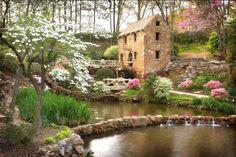 flores+e+jardins+20.jpg (902×602)