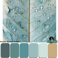 blue gray sand-tone cooler nights and beach digifree