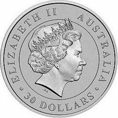 2013 1 kilo. Australian Silver Koala Bullion Coin - Obverse