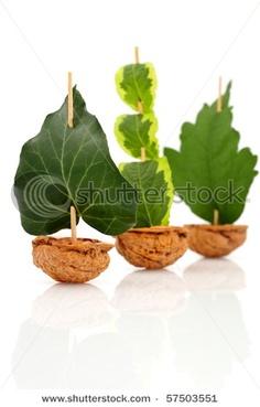 walnut craft