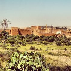 Maroc - #TravelColour - Green - Joe le Moskito - Blog de Voyage