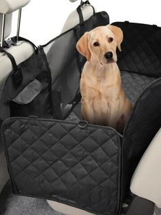 I found this amazing Multifunctional Pet Dog Travel Car Backseat Cover Mat with Safety Barrier Waterproof Seat Cover with US$39.99,and 14 days return or refund guarantee protect to us. --Newchic Waterproof Seat Covers, Make Money Now, Oxford Fabric, Dog Travel, New Friends, Clothes For Sale, Bag Storage, Pet Dogs, Pet Supplies