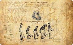 En el archipiélago ecuatoriano, Darwin encontró los principales fundamentos para su teoría.