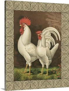 Cassell's Roosters with Border VI