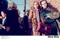 Miu-Miu-Fall-Winter-2015-Adv.-Campaign_06