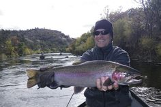 Mark with the trophy of the trip Photo courtesy of Shasta Trout Fly Fishing Guid Craig Nielsen. Fishing Guide, Fly Fishing, Klamath River, Sacramento River, River Lodge, Fall River, Trout, October, Photos