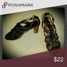 Deep Brown Snakeskin Shoes Slight heal for that little boost!  Only worn a couple of times, so fabulous condition! lmpo Shoes