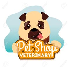 pet shop veterinary with little dog vector illustration design Illustration , Florist Logo, Dog Vector, Little Dogs, Pet Shop, Scooby Doo, Pets, Illustration, Fictional Characters, Design