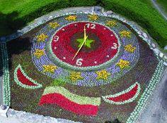 flower bed in Ciechocinek Poland