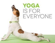 Ознакомьтесь с этим проектом @Behance: «8 Limb Yoga» https://www.behance.net/gallery/33758678/8-Limb-Yoga