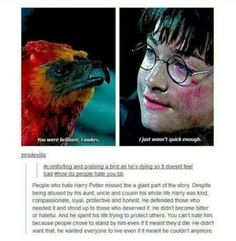 Harry Potter - kind compassionate loyal protective honest and brave
